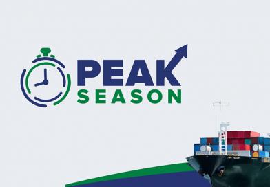 Peak-season-2019-healthcabin