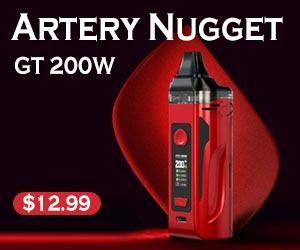 artery nugget GT 200W